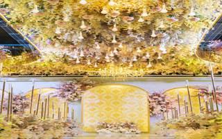 徽宴楼玫瑰之约婚宴会馆